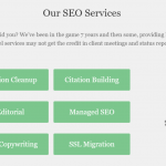 SEO services offered by this company